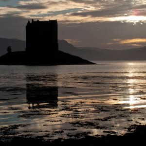Castle Stalker is a fine, atmospheric spot and a great place to stop for a while and look for wildlife.